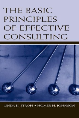 The Basic Principles of Effective Consulting 9780805854206