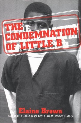The Condemnation of Little B: New Age Racism in America 9780807009758