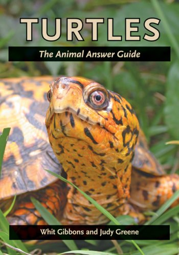 Turtles: The Animal Answer Guide 9780801893506