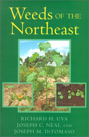 Weeds of the Northeast 9780801483349