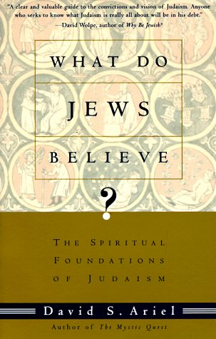 What Do Jews Believe?: The Spiritual Foundations of Judaism 9780805210590