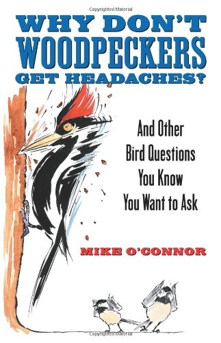 Why Don't Woodpeckers Get Headaches?: And Other Answers to Bird Questions You Know You Want to Ask 9780807085745