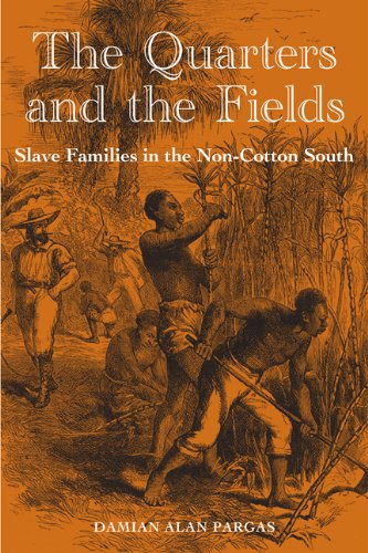 The Quarters and the Fields: Slave Families in the Non-Cotton South 9780813038049
