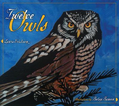 Twelve Owls 9780816677580