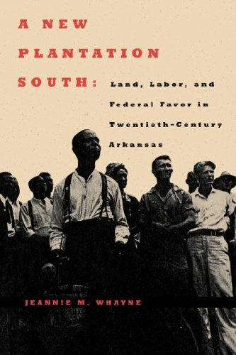 A New Plantation South: Land, Labor, and Federal Favor in Twentieth-Century Arkansas 9780813925943