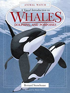A Visual Introduction to Whales, Dolphins, and Porpoises