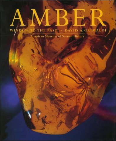 Amber: Window to the Past 9780810926523