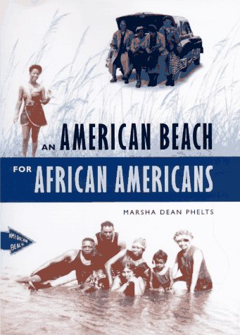An American Beach for African Americans 9780813015040
