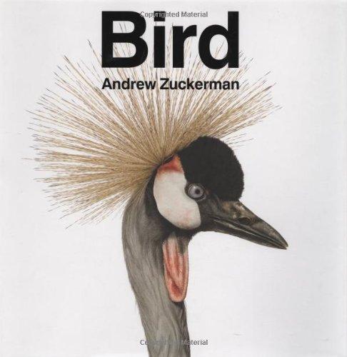 Bird 9780811870986
