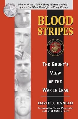 Blood Stripes: The Grunt's View of the War in Iraq 9780811733939
