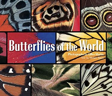 Butterflies of the World 9780810959538