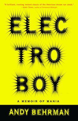 Electroboy: A Memoir of Mania 9780812967081