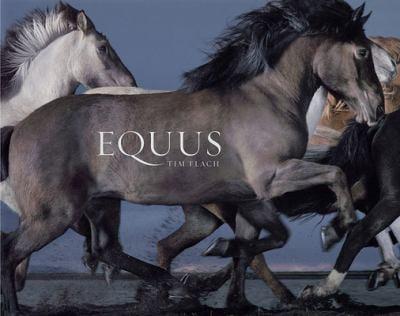 Equus 9780810971424