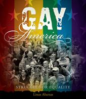 Gay America: Struggle for Equality 3380855