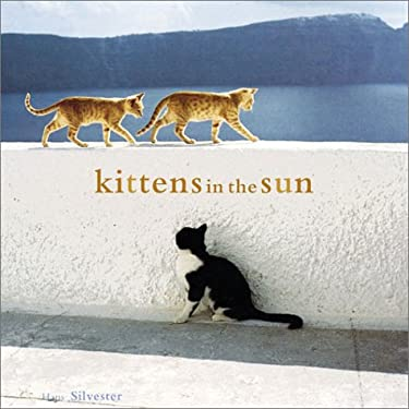 Kittens in the Sun 9780811839051