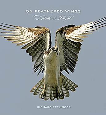 On Feathered Wings: Birds in Flight 9780810995253