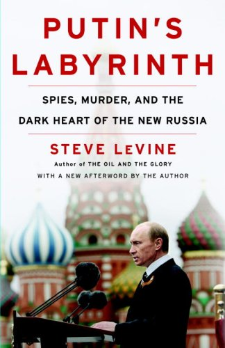 Putin's Labyrinth: Spies, Murder, and the Dark Heart of the New Russia 9780812978414