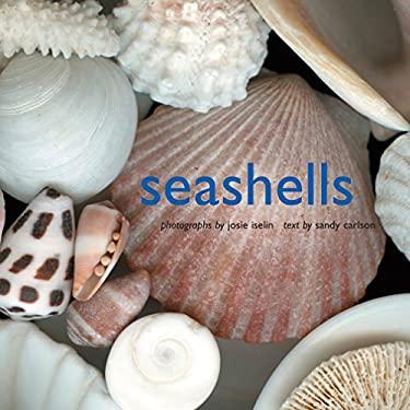 Seashells 9780810993273