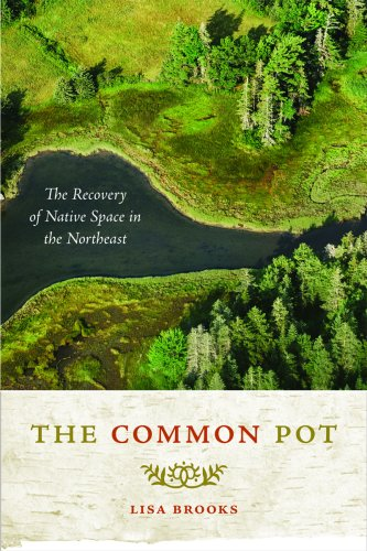 The Common Pot: The Recovery of Native Space in the Northeast 9780816647842