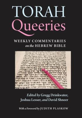 Torah Queeries: Weekly Commentaries on the Hebrew Bible 9780814720127