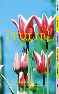 Tulip 9780810990999