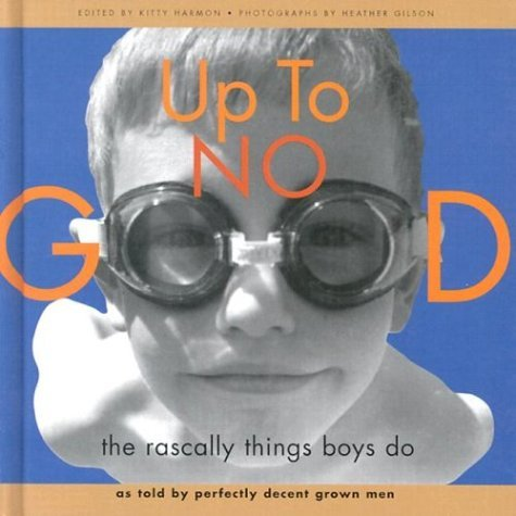 Up to No Good: The Rascally Things Boys Do 9780811826884
