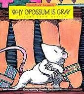 Why Opossum Is Gray - Pbk