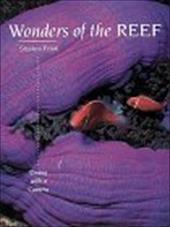 Wonders of the Reef 3377669