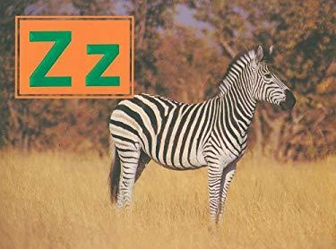 Zz 9780817256258