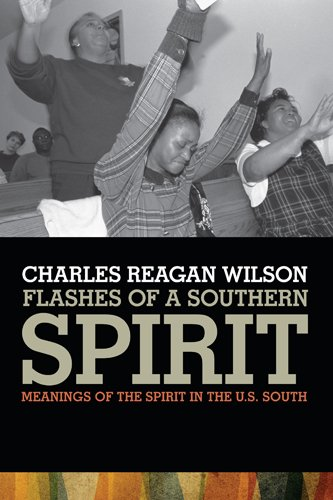 Flashes of a Southern Spirit: Meanings of the Spirit in the South 9780820338309
