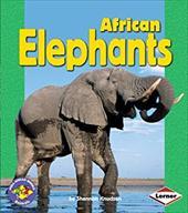 African Elephants 3547128
