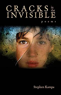 Cracks in the Invisible 9780821419526