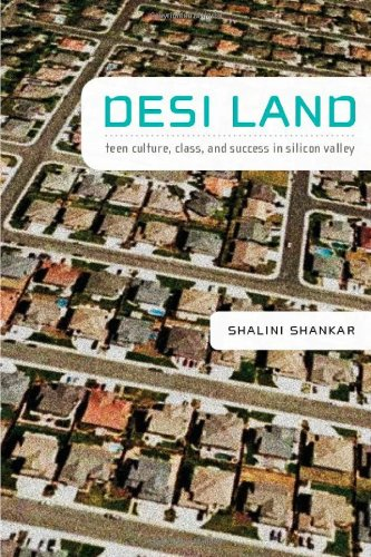Desi Land: Teen Culture, Class, and Success in Silicon Valley 9780822343158