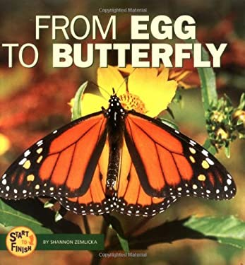From Egg to Butterfly 9780822507130