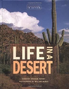 Life in a Desert 9780822521402