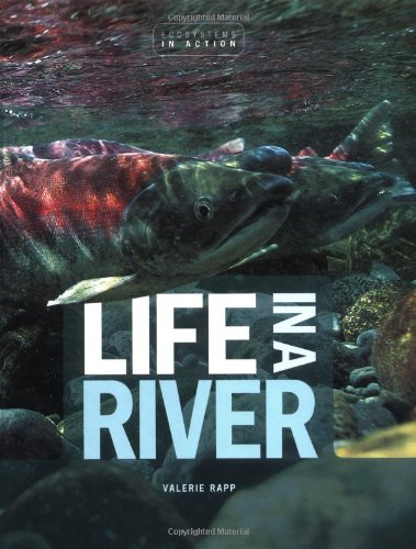 Life in a River 9780822521365