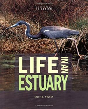 Life in an Estuary 9780822521372