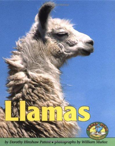Llamas 9780822500674