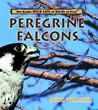 Peregrine Falcons 9780823955985