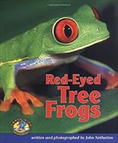 Red-Eyed Tree Frogs 3545428