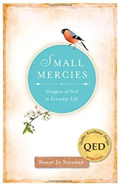 Small Mercies: Glimpses of God in Everyday Life 9780829436952