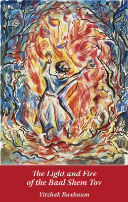 The Light and Fire of the Baal Shem Tov 9780826417725