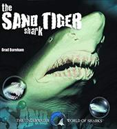 The Sand Tiger Shark