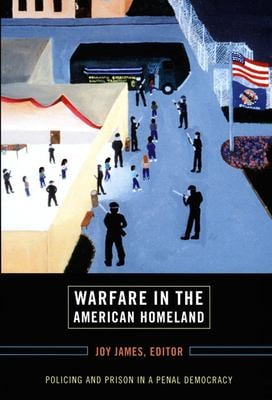 Warfare in the American Homeland: Policing and Prison in a Penal Democracy 9780822339236