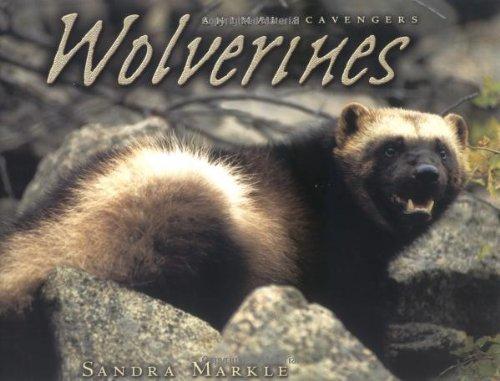 Wolverines 9780822531982