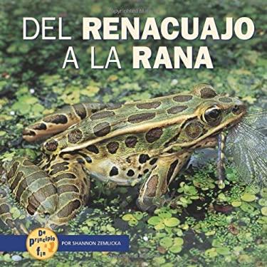 del Renacuajo a la Rana = From Tadpole to Frog 9780822564973