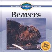 Beavers 3649201