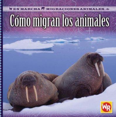 Como Migran los Animales = How Animals Migrate 9780836884296