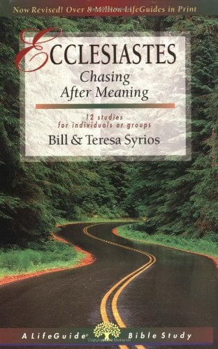 Ecclesiastes: Chasing After Meaning 9780830830275