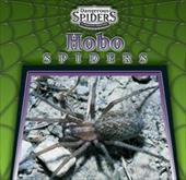 Hobo Spiders 3649394
